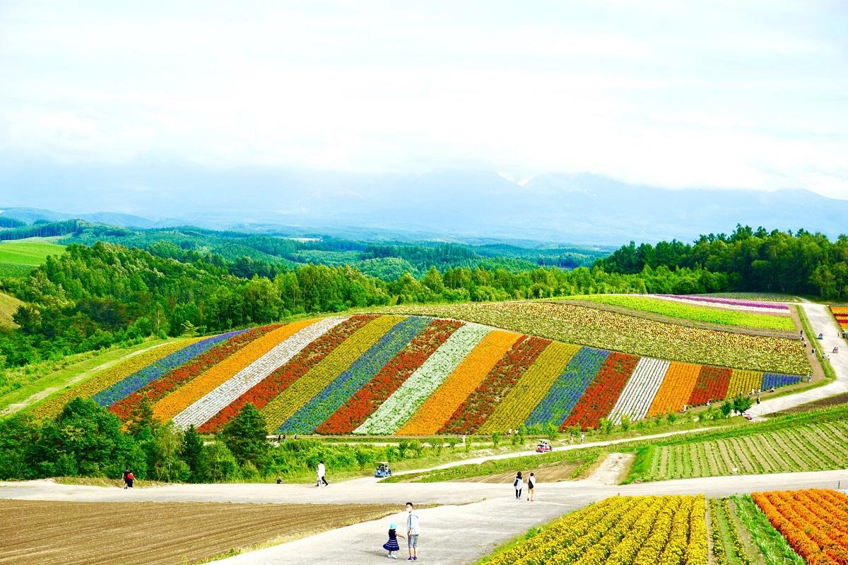 Hokkaido: qué visitar en la segunda isla más grande de Japón
